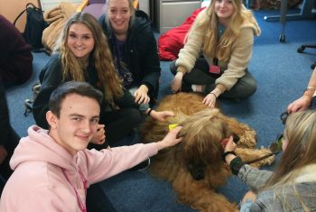 Therapy Dog and students